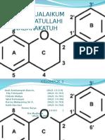200265929-flavonoid-ppt