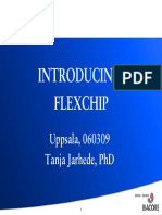 2 - Introducing Flexchip Uppsala 060309
