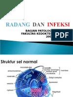 Radang Dan Infeksi Kbk
