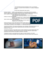 Prezentare Grupa PDF