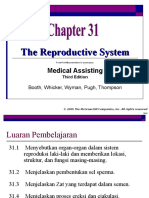 7 Reproductive System