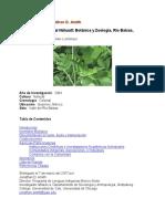 03049esAmith01.pdf