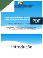 Efectiveness of ivermectin in dogs ticks - Fábio M. C. Teixeira.2015.Angola