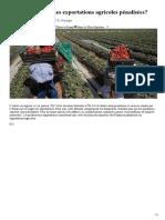 Onssa_Services_Les Exportations Agricoles Pénalisées