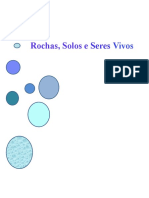 rochassoloseseresvivos2-110304110405-phpapp01