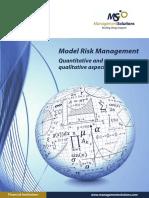 Model Risk