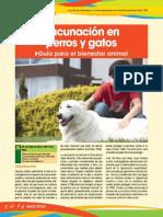 UTN Versin 26 Enero Vacunacin en Perros y Gatos