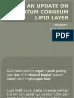 An Update on Stratum Corneum Lipid Layer