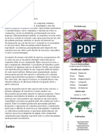 Orquídea – Wikipédia, A Enciclopédia Livre