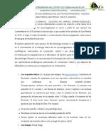 Caraceristicas Generales de Los Microorganismos, Hongos Atqueobacterias, Bacterias, Virus y Hongos.