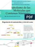 Bioquímica - T10