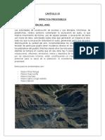 3.-IMPACTOS-PREVISIBLES.docx