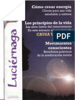 luciernaga_4