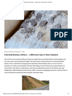 Interdistributary drifters - a Miocene bay in New Zealand - Mike Pole.pdf