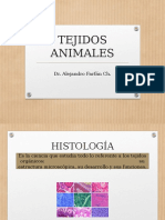 Clase 12 Tejidos Animales