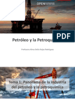 1 Tema01_Panorama de la industria del petroleo y la petroquimica.pdf