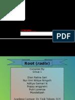 Radix (Root/ Akar)