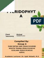 Grup 4 BIO PGMIPAU- Pteridophyta (Dian Ratna Sari, Gusliani, Novita Triana, Azrul)