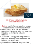 sehs topic 3 2 carbohydrate and fat metabolism