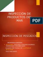 Segunda Inspeccion de Productos Marinos
