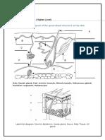 7 0 student workbook