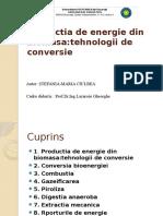 Productia de Energie Din Biomasa