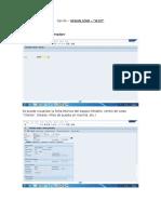 Opción Visualizar- IE03 SAP