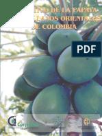 Cultivo de la papaya.pdf