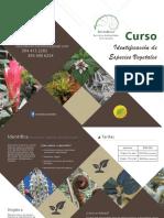 Identificación de Especies vegetales