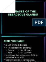 Sebaceous Glands