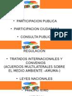 Participacion Pública AUMAS