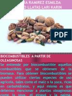 6-Biocombustibles a Partir de Oleaginosas