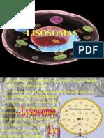 lisosomas exposicon