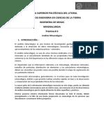 Guia de Practicas Analisis Mineralogico