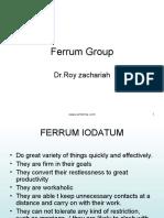 Ferrum Group