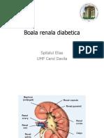 Boala Renala Diabetica - 3 Nov -Dr.reghina