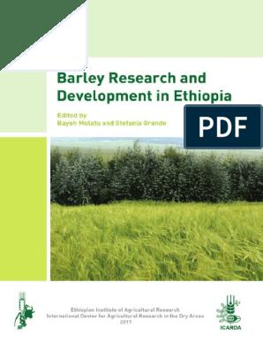 Barley_Research_and_Development_in_Ethiopia pdf   Barley