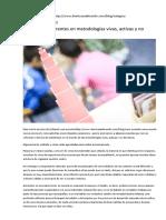 5 Escuelas Referentes en Metodologías Vivas, Activas y No Directivas