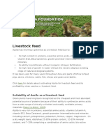 Azolla FoundationLivestock Feed