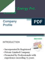BREMSE Profile.pdf