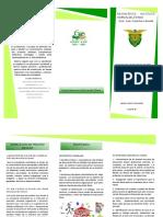 3 triptico PROCESO ESCOLAR.pdf