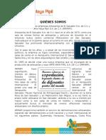 Campaña Publicitaria-parte Ricardo Alberto Henriquez Alvarenga Ha101013