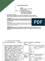 Programación Anual Huancayo 29-04-14