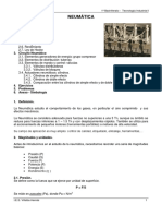 apuntes-neumc3a1tica.pdf