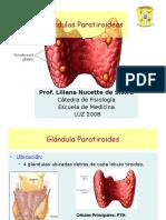 MODULO IV. Metabolismo Del Ciclo y Los Fosfatos