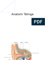 Anat Telinga