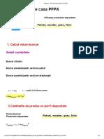 Model Tema de Casa PFPA_Final