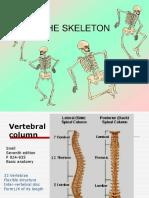 Anatomy #2 Vertebral Column-1