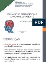 Avaliação Do Estado Mental e Emocional Do Paciente