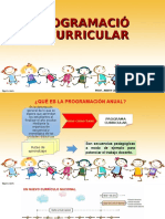 Programa Curricular Andry